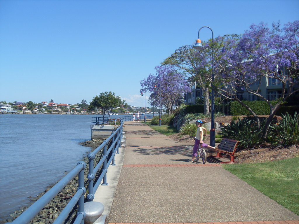 Вдоль реки возле парка