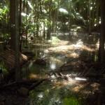 Ведьмины водопады. Горы Тамбурин.