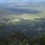 Горы Тамбурин Тропический лес