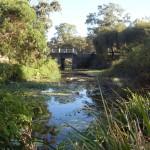 Парк Humpybong Creek.