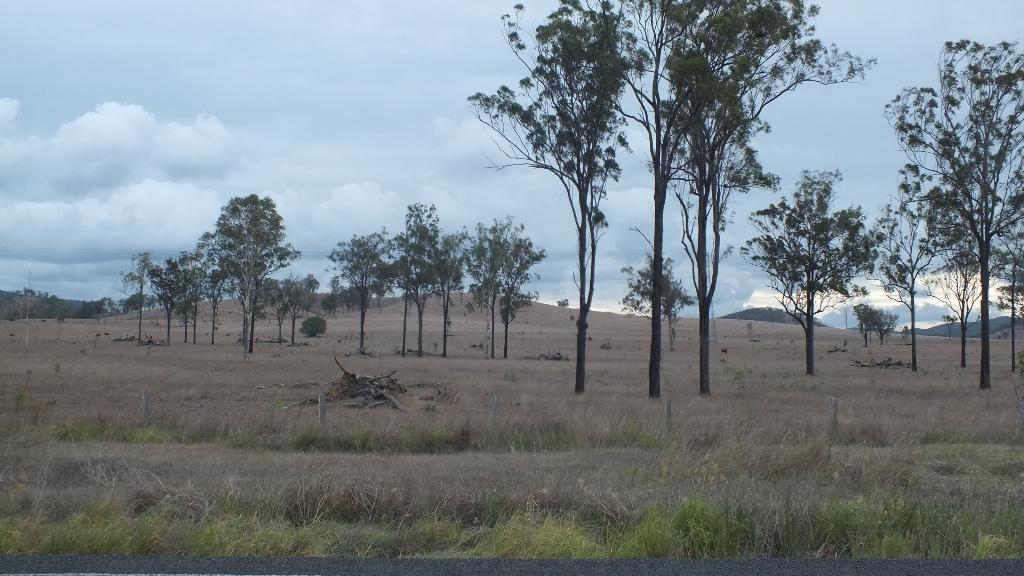 Сухие и поля, огромные участки. Деревенская Австралия
