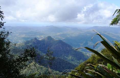 Долина Mount Warning