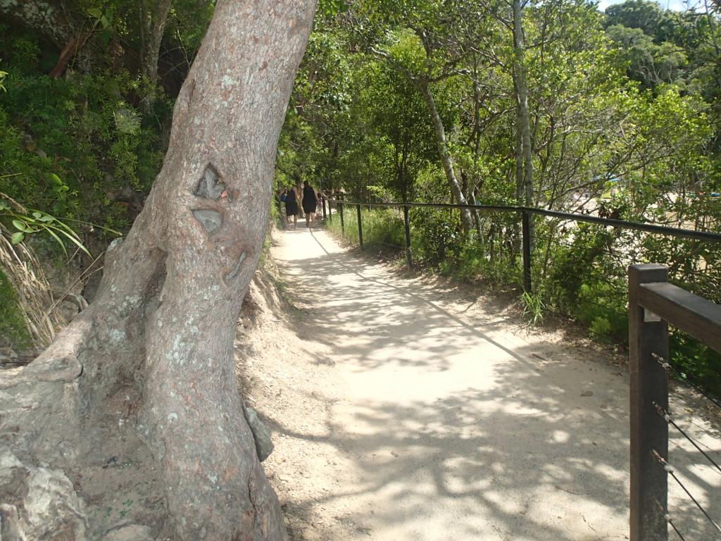 Дорожка вокруг горы Burleigh