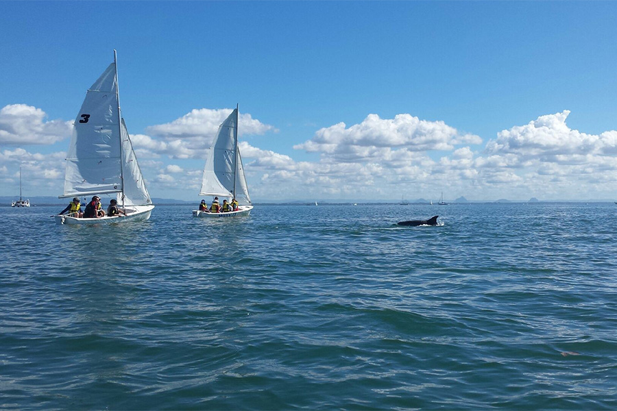 a-moreton-bay-boat-club-learning-to-sail-holiday-for-the-kids