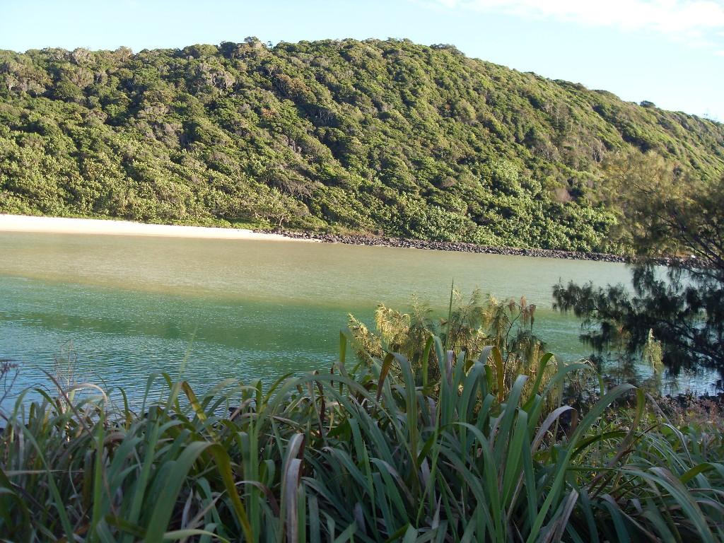 Вид с Пальмового пляжа на реку Tellebudgera