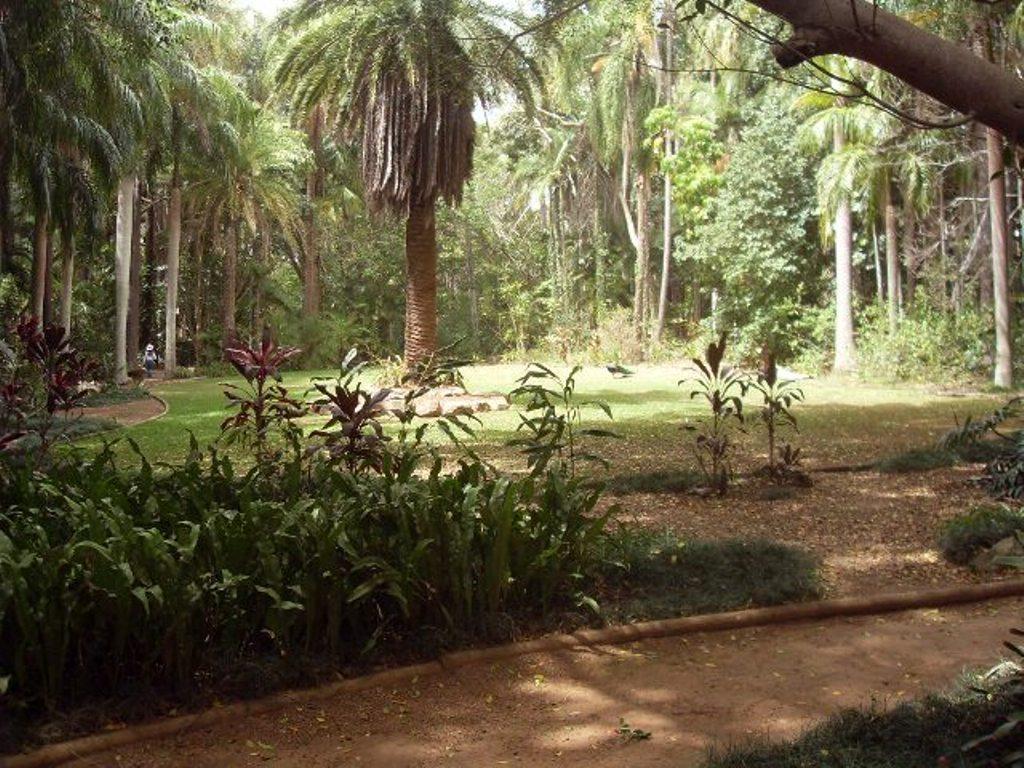 Парк сам по себе достаточно красивый, даже без зоопарка