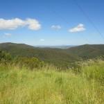 Mount Tamborine Горы Тамбурин Австралия