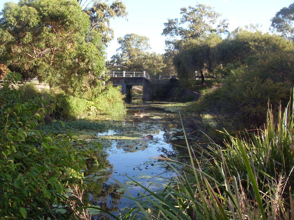 Парк возле реки. Редклиф