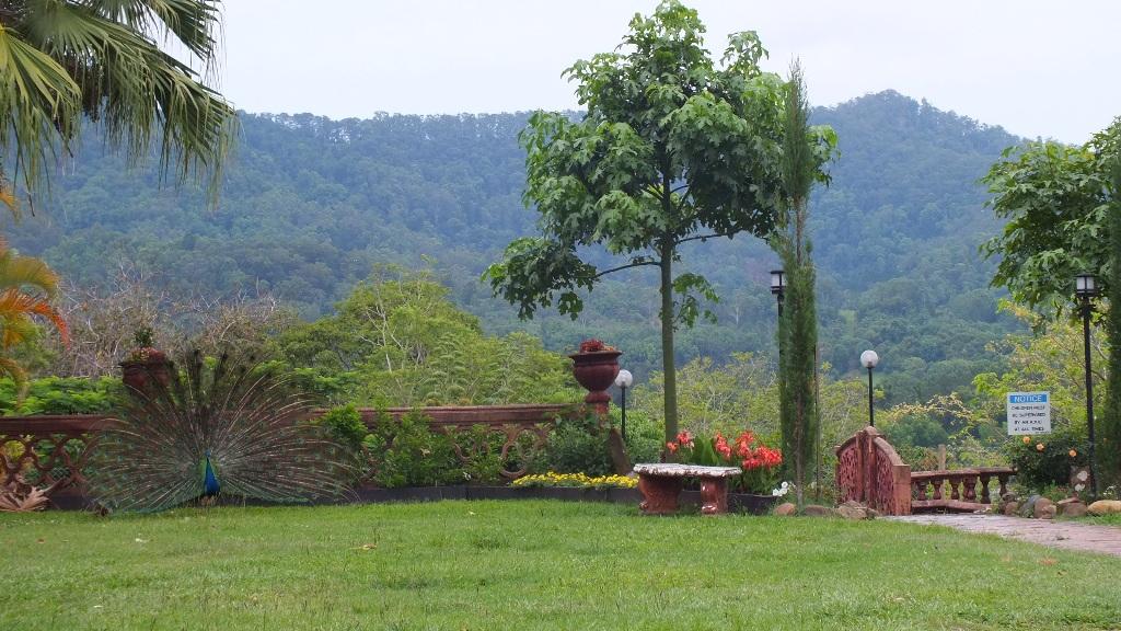 Вид на ферму от храма
