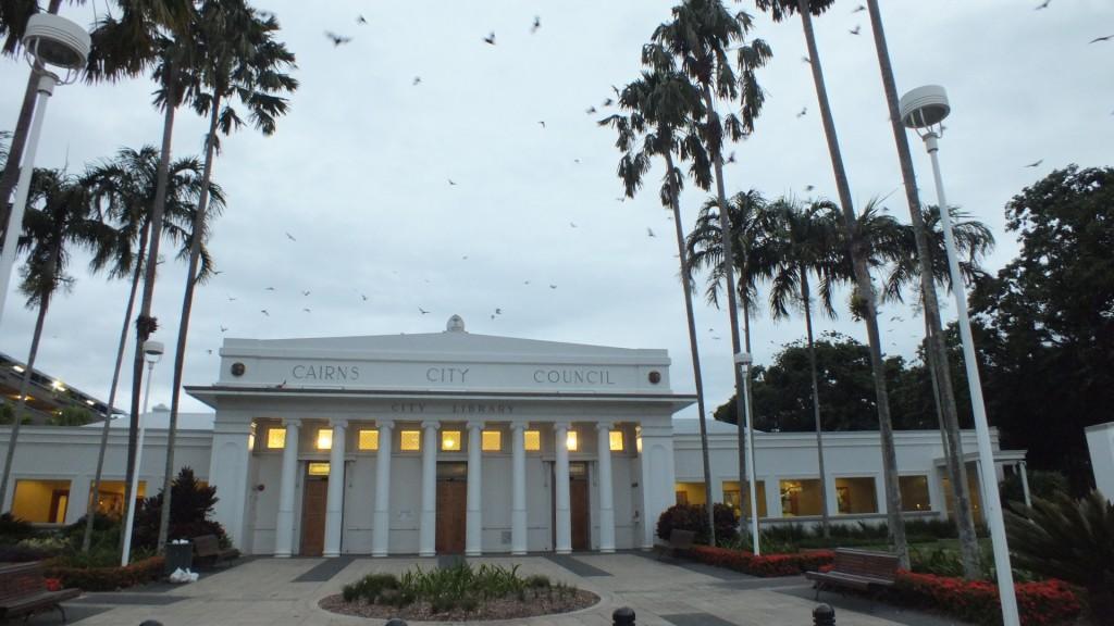 Стаи летучих лисиц над зданием городского совета. Кернс.
