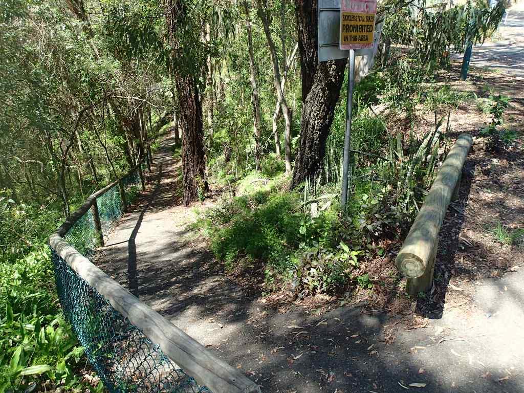 Начало дорожки в зоопарк от Vintage drive