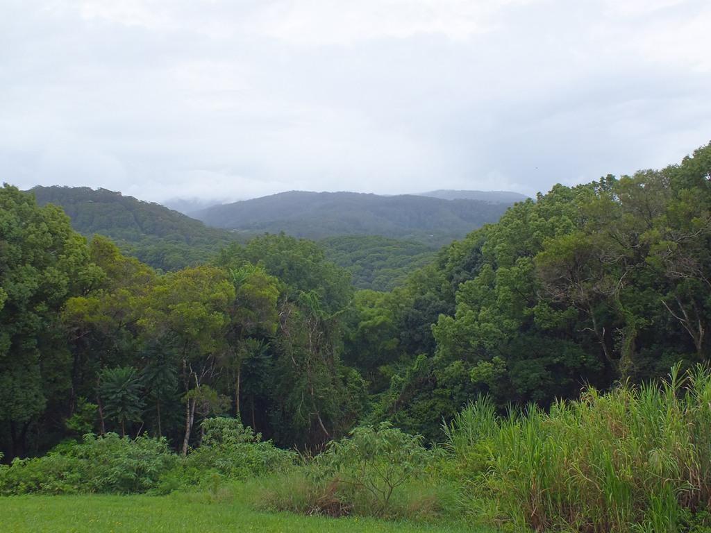Вид на горы из парка