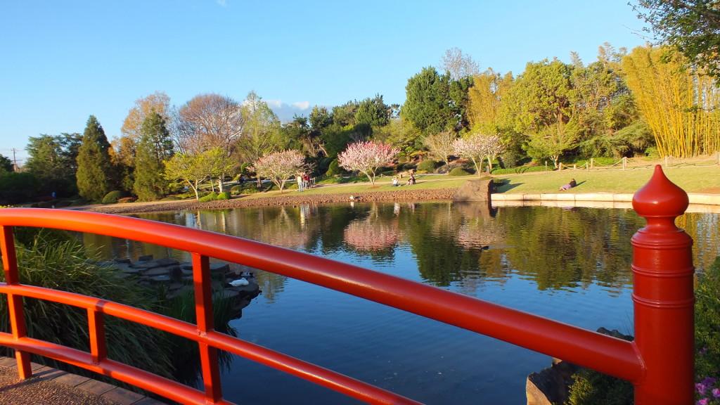 Japanise Garden2